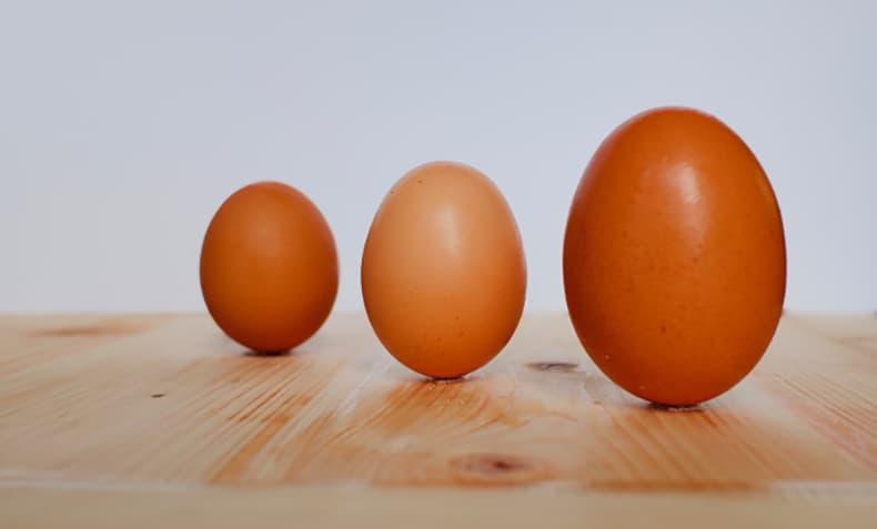 不揃いな卵